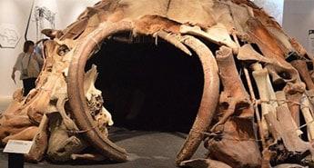 mammoth-tent