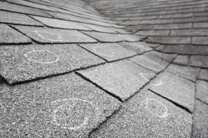 hail damaged shingles circled with chalk